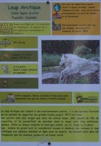 loup zoo pescheray