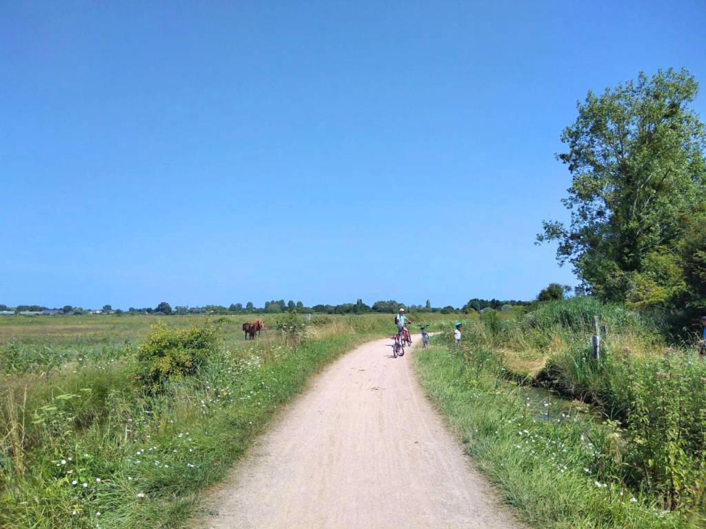 Vélo dans les marais de Cabourg